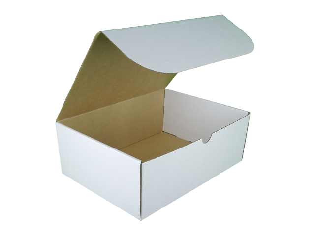 Rectangle Hinged Lid Cardboard Box - Size: 250x185x92