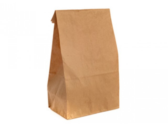 Large Checkout Paper Bags Pack/250